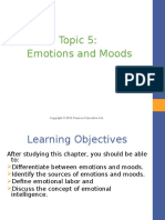 Topic 5 - Emotions Moods.pptx