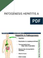 Patogenesis Hepatitis a Dan Jaundice