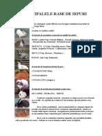 125863333-Rase-de-iepuri-Principalele-rase-de-iepuri-pdf.pdf