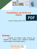Tulb_de_ritm (1)