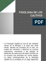 Fisiologia de Los Cultivos Ujcm