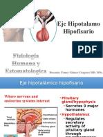 10 Fisio Endocrino