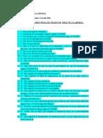 Examen Final de Practica Laboral 2016 (3)