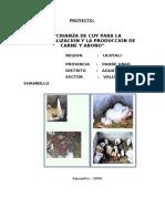 PROYECTO de cuyes Shambillo  OJITO.pdf