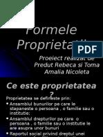 Formele Proprietatii