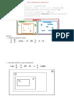 T1 Fracciones y Decimales