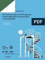 El Sector de Trigo en El Paraguay 40 p