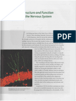 Chapter 2_ Structure and Function of the Nervous System.pdf