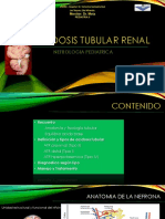 223477065 Acidosis Tubular Renal Pediatria