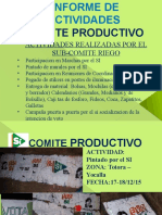 Informe Productivo DDR