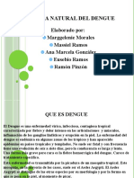 Presentacion Del Dengue