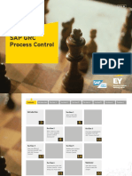 EY SAP GRC Process Control