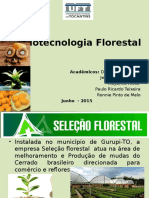 Seleção florestal