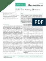 Age Related or Senile Cataract Pathology, Mechanism and Management