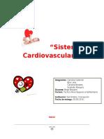 Sistema Cardiovascular Pediatria