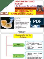 Embriologia de Cabeza y Cuello