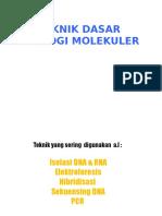 2-EKSPERIMENTASI-DALAM-IMUNOFARMAKOLOGI-2.pptx
