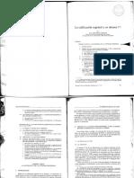 Lacalificación Registral y Su Alcance