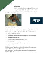 Tata Cara Adzan Untuk Bayi Baru Lahir
