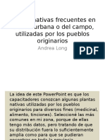 plantas-100606210911-phpapp01
