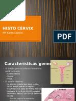 Histo Cervix