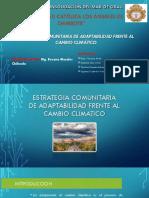 Semana 13_EXPOSICION_Estrategia Comunitaria Frente Al Cambio Climatico