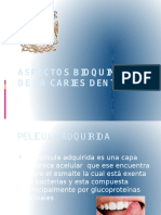 Aspectos Bq de La Caries Dental