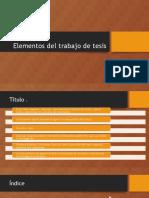 Elementos Del Trabajo de Tesis