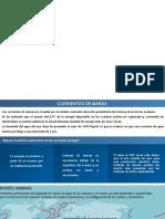 Disertacion Corrientes Marinas