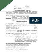 64220220-3-d-Modelo-de-Informe-Pericial.doc
