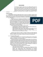 Septuaginta 1.pdf
