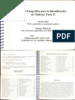 Guía Identificación Malezas. Parte II.