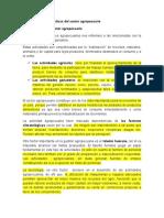 Principales Características Del Sector Agropecuario