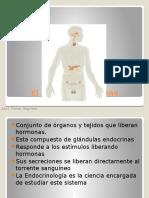 El Sistema Endocrino 1