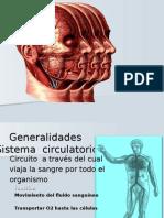 Generalidades de Sistema Circulatorio, Arterias y Venas de La Cabeza