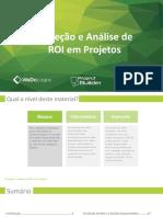 E-Book - Análise de ROI Em Projetos