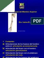 articulacionesdelmiembrosuperior-090527115303-phpapp01.ppt