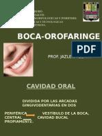 Boca-Orofaringe Prof. JZerpa.- (1)
