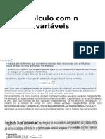 Cálculo Com n Variáveis_funções