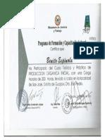 BENITO 14.pdf