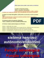 SNA - Função Adrenérgica