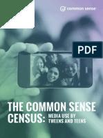 census executivesummary