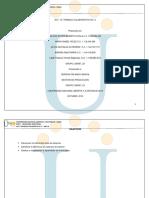 Trabajocolaborativo_2__256597_23 (1).pdf