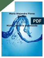 FloresMendez MariaAlejandra M14S1 Materia Organizada