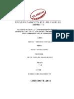 Monografia Sistema Contables