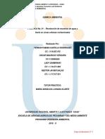INFORME QUIMICA AMBIENTAL PRACTICA N°1 %2c 2 %2c Y 3 (1)