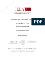Manual DPP para LED.pdf