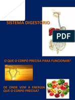 Aula Viii - Sistema Digestório