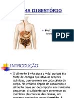 Sistema Digestorio Ppt - PDF