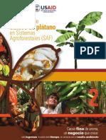 Cacao Asociado Con Platano